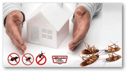 Pest-Control-Management